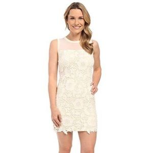KUT from the Kloth Ivory/Nude Lace Sheath Dress
